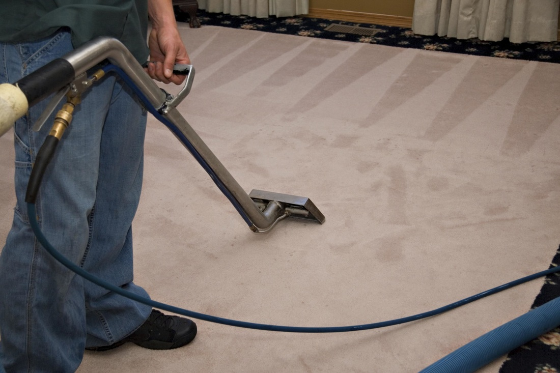 Danbury CT's best carpet cleaning service